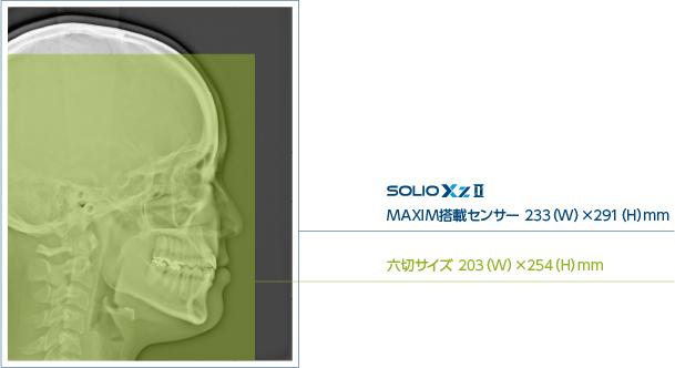 六切サイズ 203(W)×254(H)mm